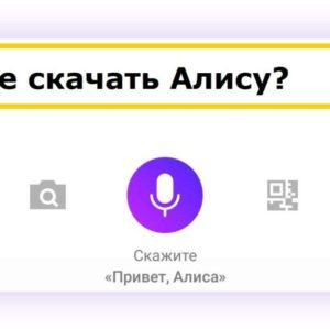Где скачать Алису — новый голосовой ассистент от Яндекса